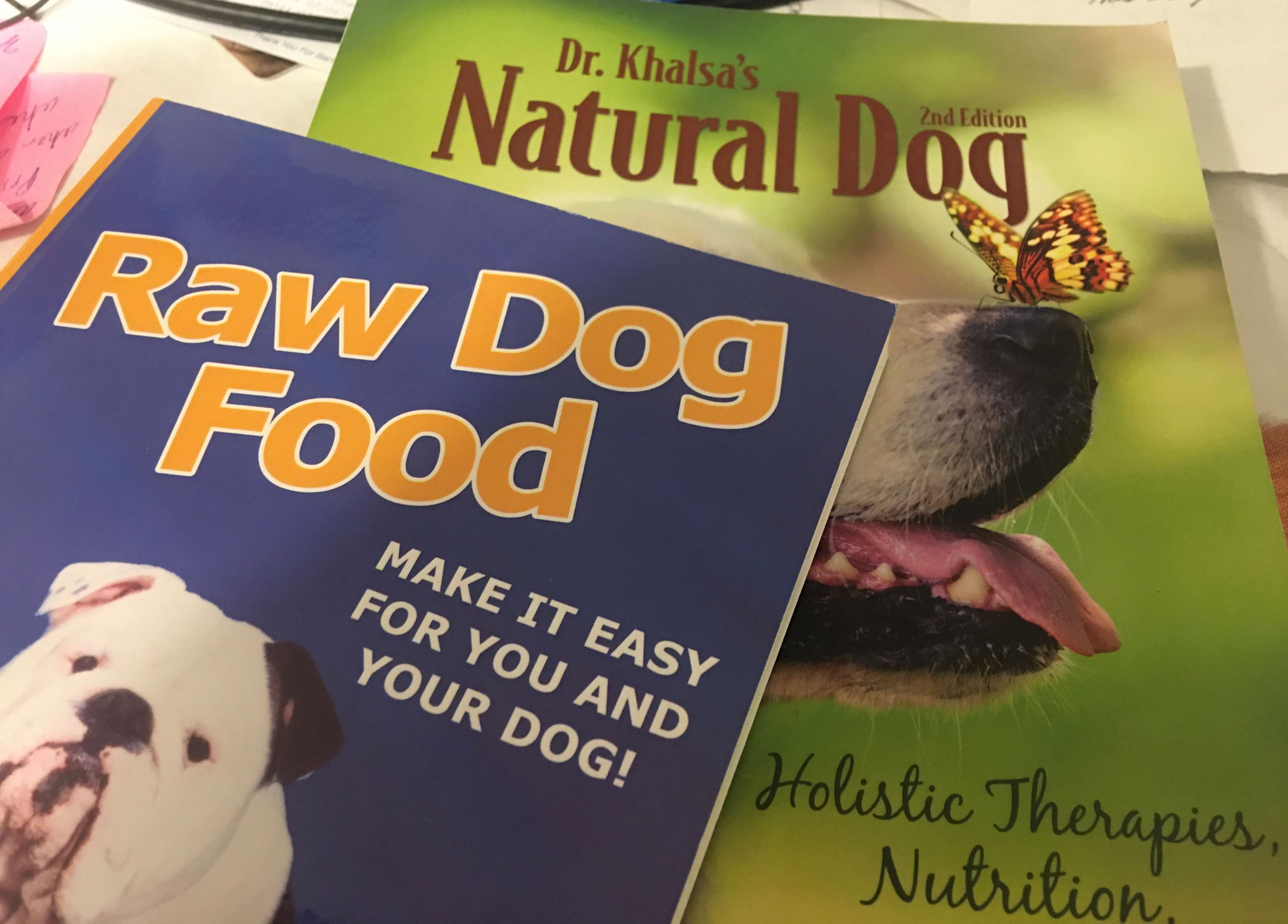 From dry kibble to homemade human grade meals to raw – the journey to radiant health through diet for dogs