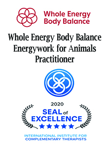 Licensed Practitioner Energy Work
